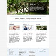 North Carolina Wordpress Web Design and Hosting
