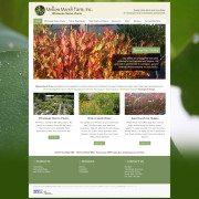 Mellow Marsh Farm Website Design