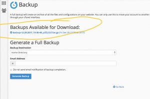 cPanel Backup Step 5